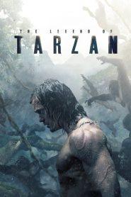 The Legend of Tarzan – Huyền Thoại Người Rừng (2016)