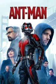 Ant-Man – Người Kiến (2015)