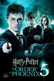 Harry Potter and the Order of the Phoenix – Harry Potter và Hội Phượng Hoàng (2007)
