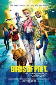 Birds of Prey: Cuộc Lột Xác Huy Hoàng Của Harley Quinn (2020)