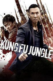 Kung Fu Jungle – Kế Hoạch Bí Ẩn (2014)