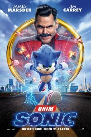 Sonic the Hedgehog – Nhím Sonic (2020)