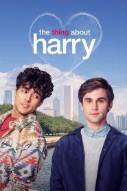 The Thing About Harry – Những Điều Về Harry (2020)